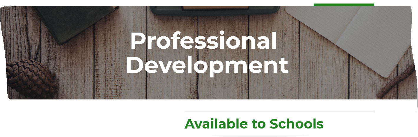 Professional Development Banner