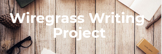 Wiregrass Writing Project banner